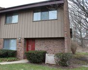 1573 Wildflower Way, South Bend image