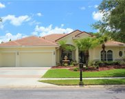 17206 Emerald Chase Drive, Tampa image