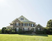 209 Chestnut Springs Way, Anderson image