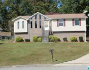 805 Saddle Ridge Cir, Pinson image