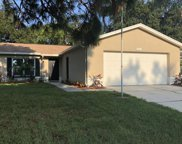 3263 Mulberry Drive, Clearwater image