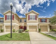 2866 Conch Hollow Drive, Brandon image