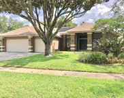 6316 Chauncy Street, Tampa image