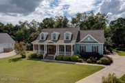 205 N Sea Lily Court, Hampstead image