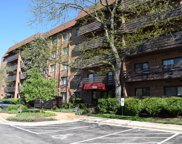 2020 Chestnut Avenue Unit 406, Glenview image