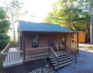 167 Goldminers Lane, Tellico Plains image