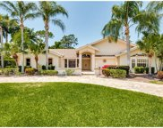 15690 Pipers Glen, Fort Myers image