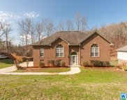 6728 Country Vale Dr, Pinson image