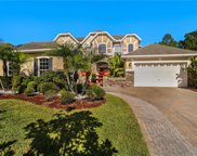 16151 Bristol Lake Circle, Orlando image