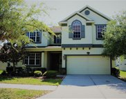 10909 Observatory Way, Tampa image