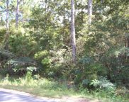 59 acres Punch Bowl Road, Defuniak Springs image
