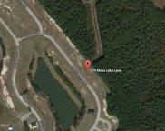 529 Moss Lake Lane, Holly Ridge image