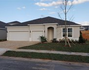 1328 Wildcat Lane, Minneola image