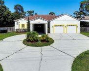 1402 Oberry Hoover Road, Orlando image