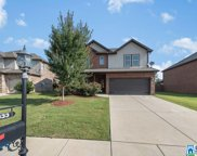 333 Lacey Ave, Alabaster image