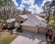 408 Pine Bluff Drive, Lutz image