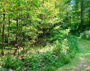 38 Spring Cove Lot 38, Blairsville image