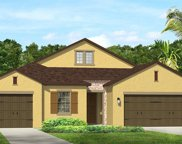 1771 Whitewillow Drive, Wesley Chapel image