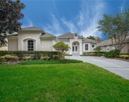 11337 Fenimore Court, Windermere image