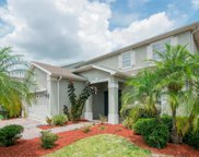 8808 Cameron Crest Drive, Tampa image