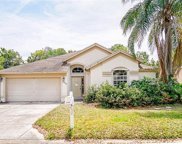 22113 Seashore Cir, Estero image