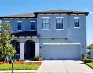 5482 Angelonia Terrace, Land O' Lakes image