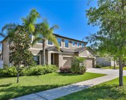 11804 Harpswell Drive, Riverview image