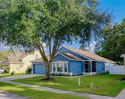 24302 Satinwood Court, Lutz image