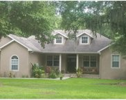 1609 Country Path Way, Plant City image