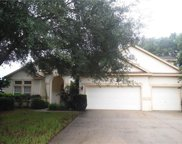 4209 Imperial Eagle Drive, Valrico image
