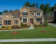 16628  Doves Canyon Lane, Charlotte image