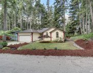 12012 Country Club Dr, Anderson Island image