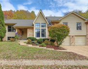 14361 White Birch Valley, Chesterfield image