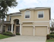 515 Harbor Grove Circle, Safety Harbor image