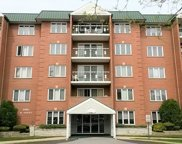 6980 West Touhy Avenue Unit 207, Niles image