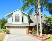 3185 Montrose Place, Palm Harbor image