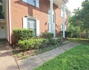 7721  Ivy Hollow Drive, Charlotte image