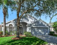 12213 Coldstream Lane, Tampa image