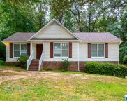 111 Top O Tree Ln, Hoover image