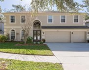 2833 Windcrest Oaks Court, Valrico image