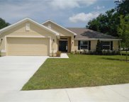 2250 Angel Fish Loop, Leesburg image