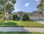 95 Kelleys Trail, Oldsmar image