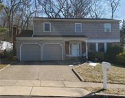 58 Barry  Lane, Syosset image