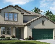 13922 Snowy Plover Lane, Riverview image