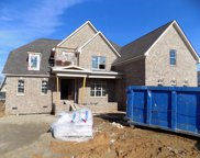 6006 Wallaby Court (393), Spring Hill image