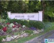 808 Woodland Village Unit 808, Homewood image