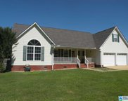 123 Meadow Farm Ln, Sylacauga image