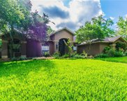 17209 Tiffany Shore Drive, Lutz image