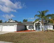 9411 Crocus CT, Fort Myers image
