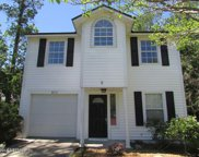 2654 BIG SUR AVE, Orange Park image